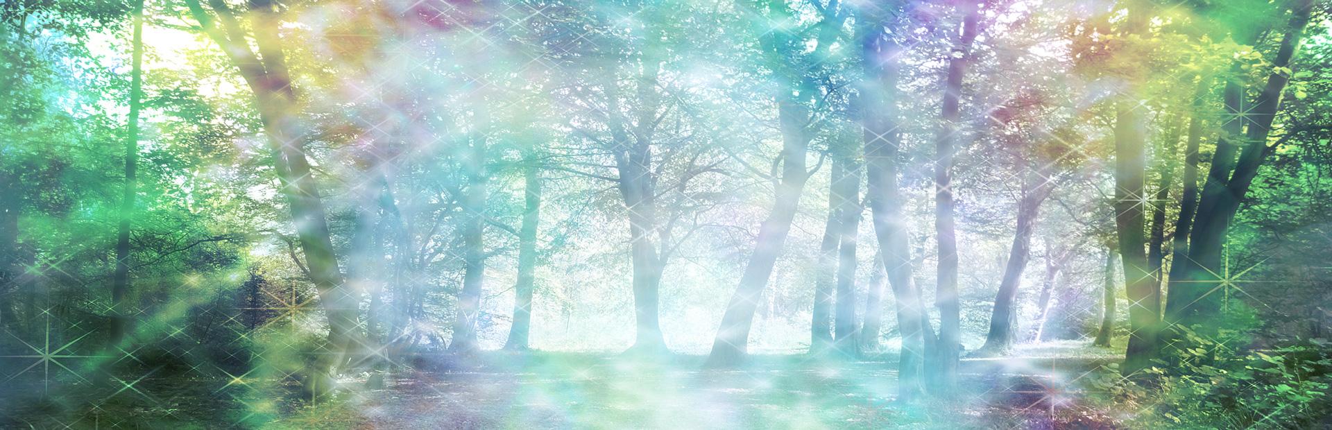 slider-forest